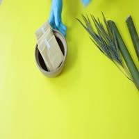 Natural bamboo sanitary pad